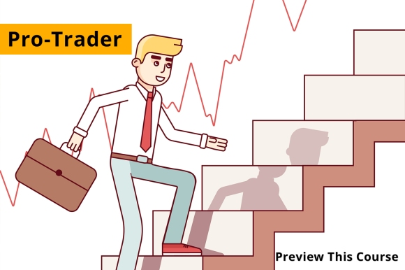 Forex Trading Courses – Bigly Forex Trader